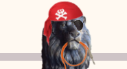 A bronze lion with a pirate cap and eye-patch holds an orange microphone cord in its mouth.