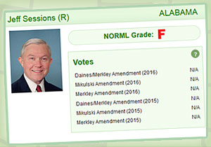 Jeff Sessions receives an F grade from NORML