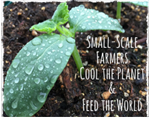 Support Small Scale Farmers: Small Scale Farmers Cool the Planet